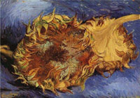 Image 02: Sunflowers