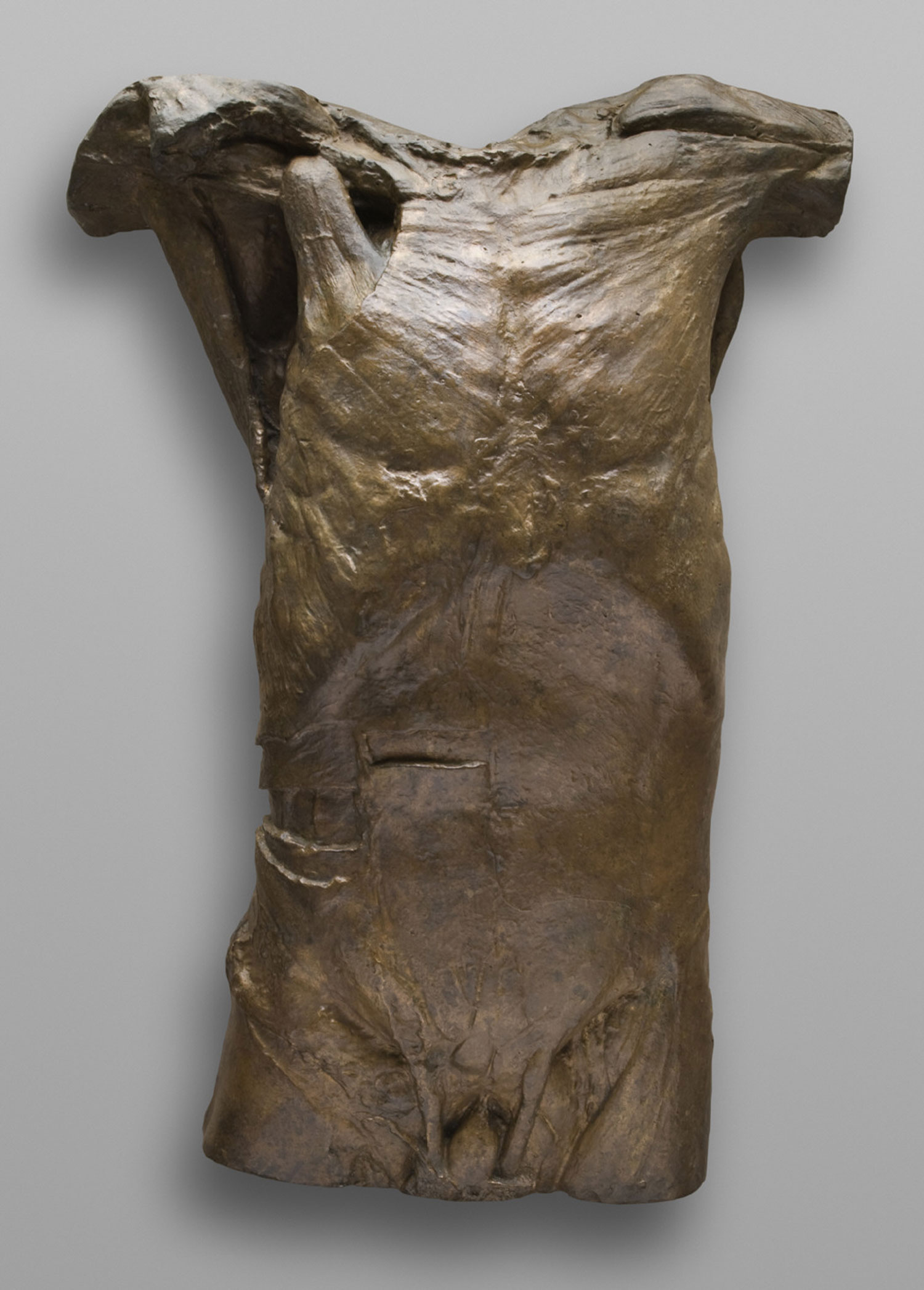 Front of Male Torso