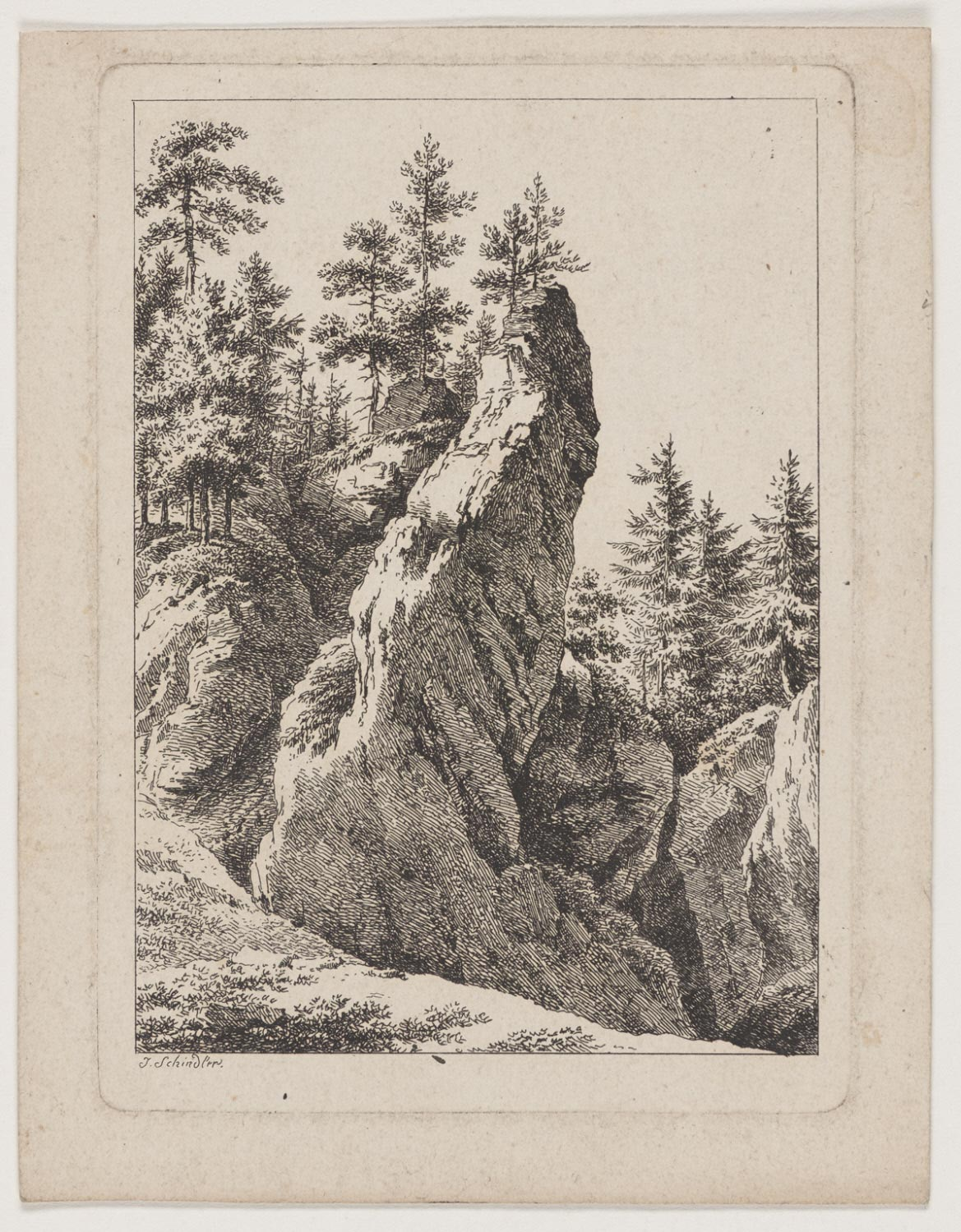 Crags and Firs