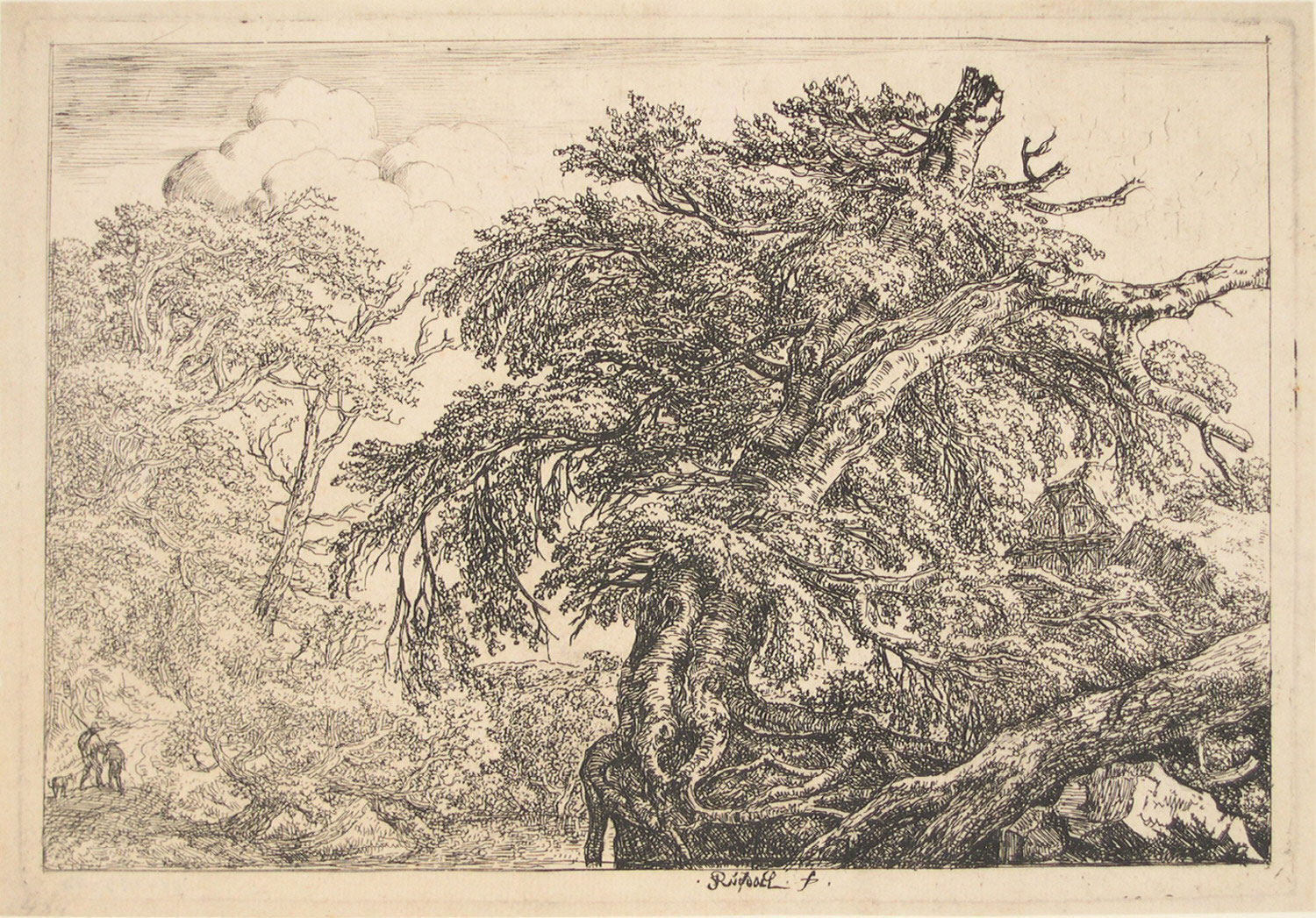 The Great Beech Tree, with Two Men and a Dog