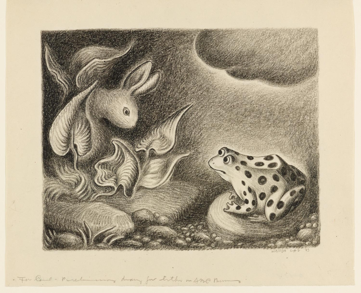 F (Is for Frog) - The ABC Bunny:(study drawing)