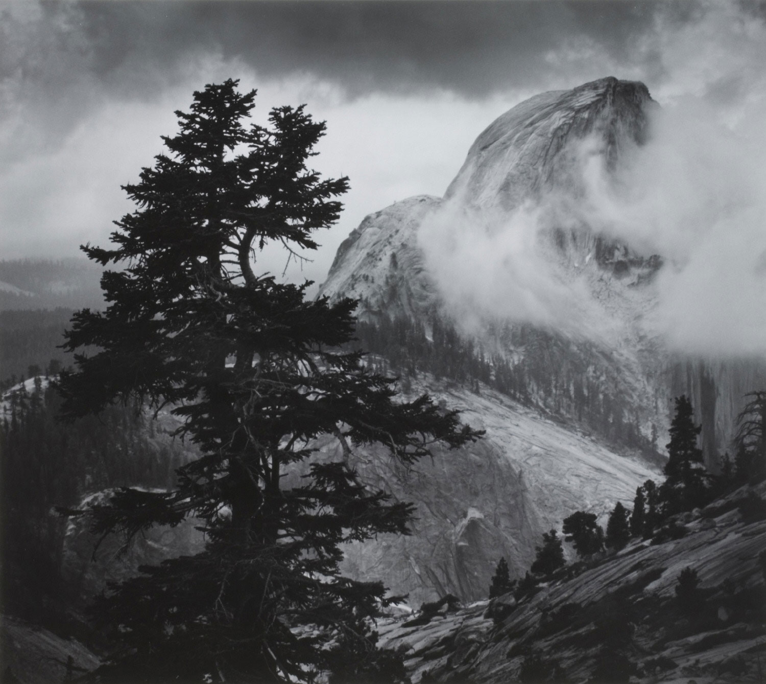Half Dome, Tree, Clouds, from Olmstead Point, Yosemite National Park, California