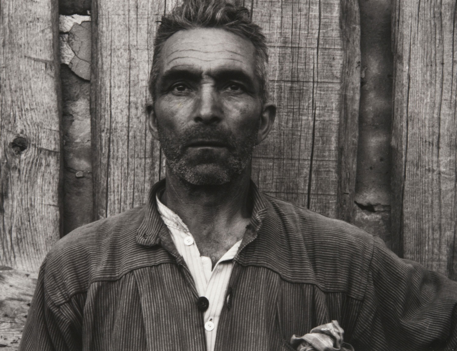 Farmer, Luzzara