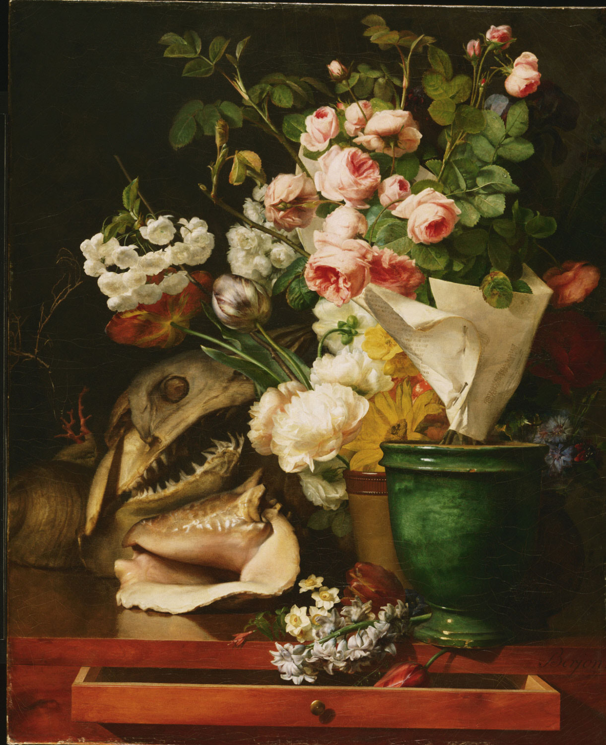 Still Life with Flowers, Shells, a Shark's Head, and Petrifications