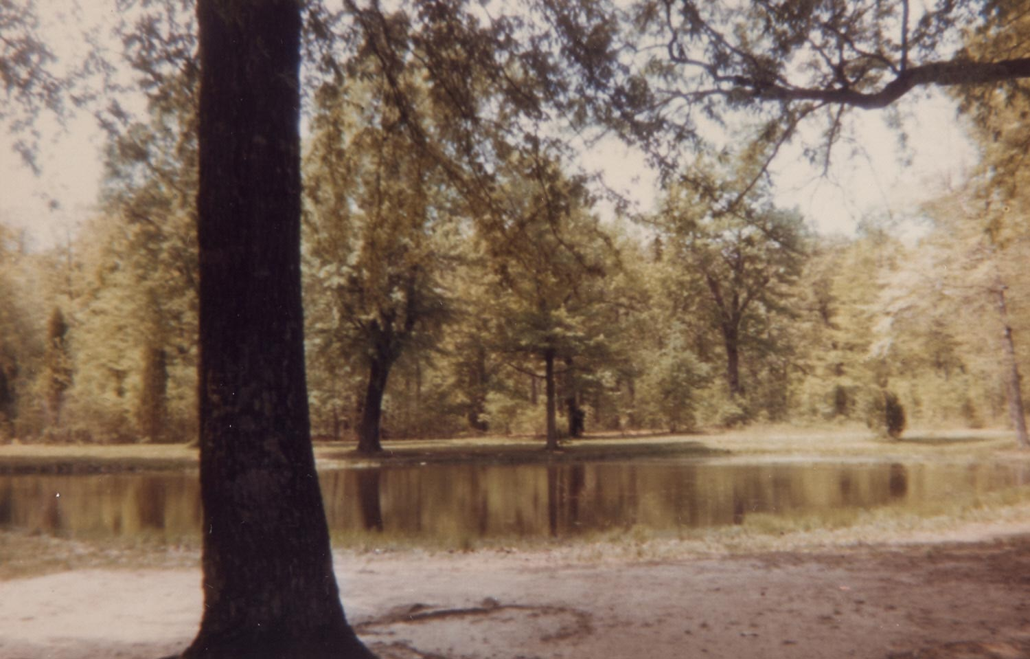 Bloody Pond - Shiloh Battlefield, Tennessee, 1967