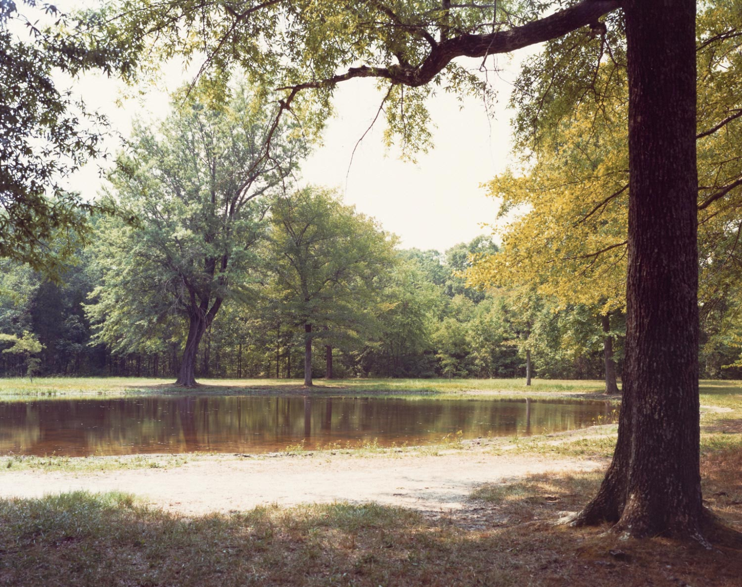 Bloody Pond - Shiloh Battlefield, Tennessee, 1980