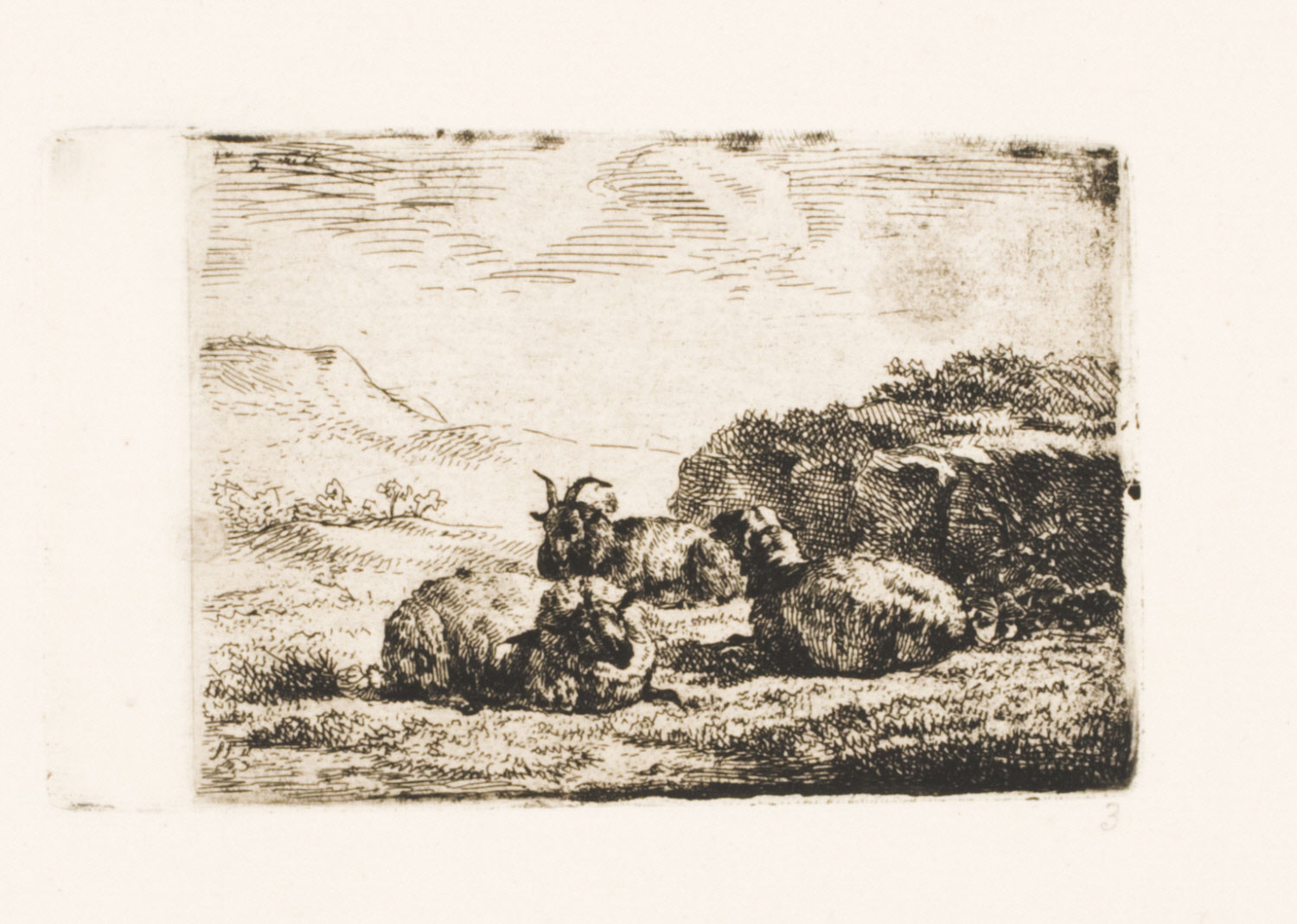 A Goat and Two Sheep Resting by a Mound