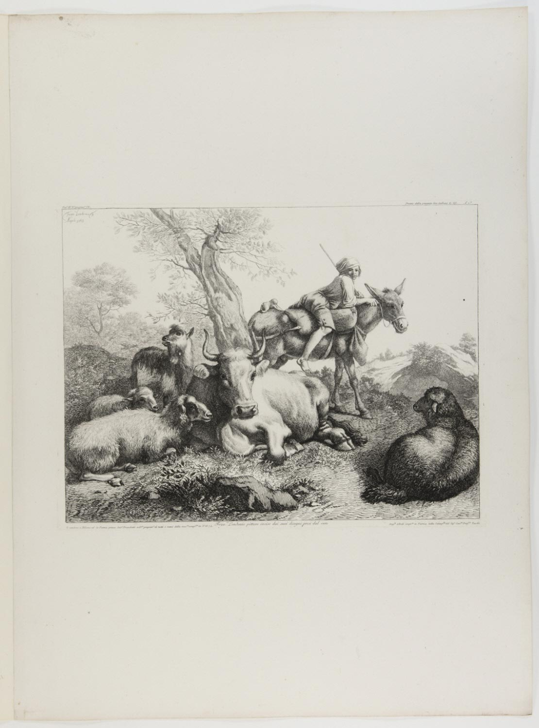 Boy on a Donkey Watching a Herd