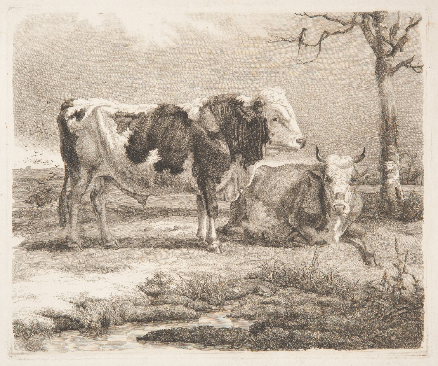 Two Cows, One Lying Down, in a Landscape
