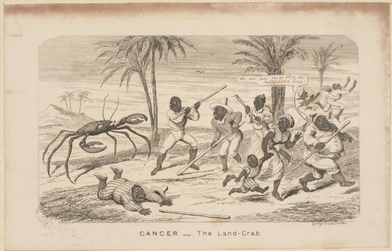 Cancer (The Land-Crab)