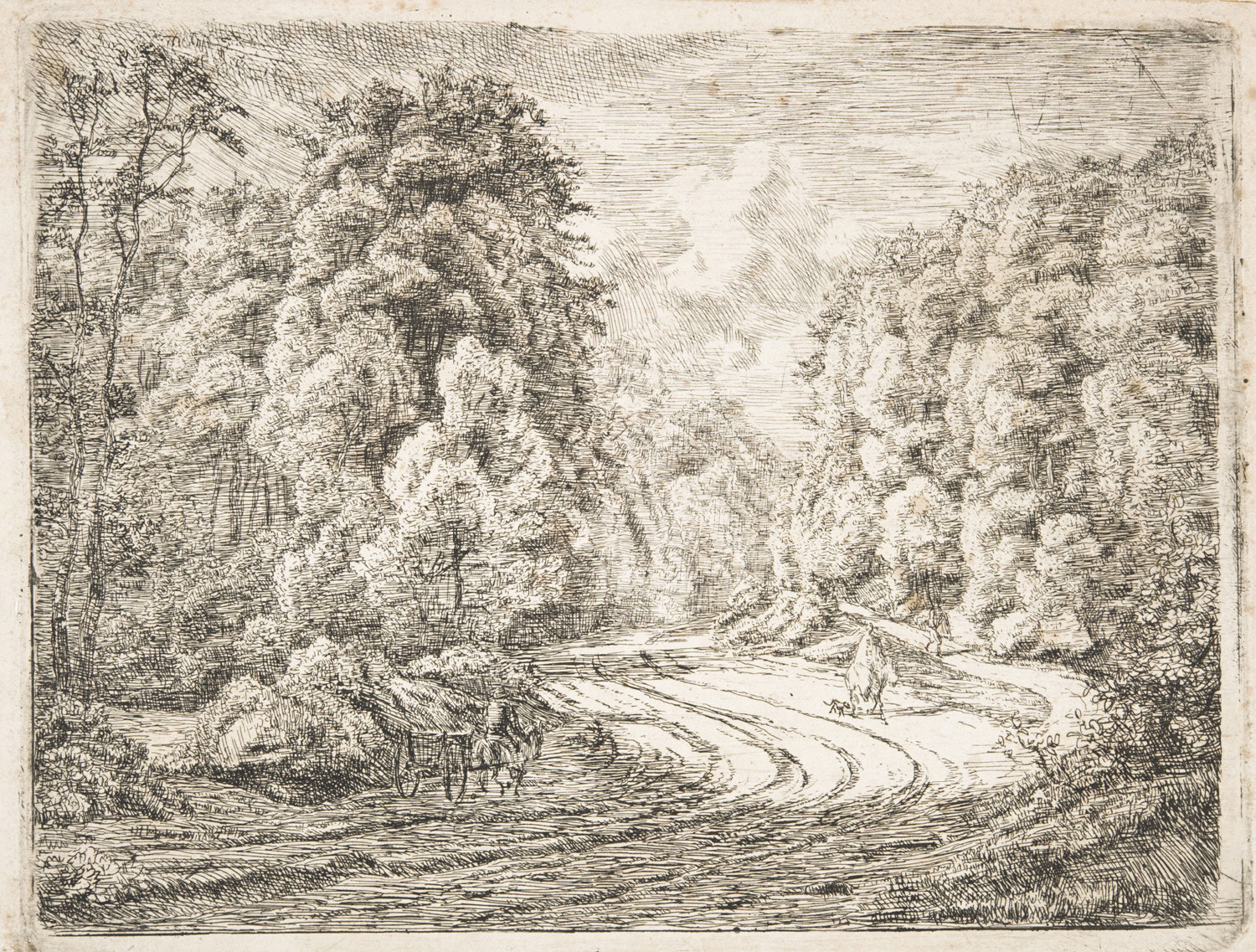 Road through the Forest