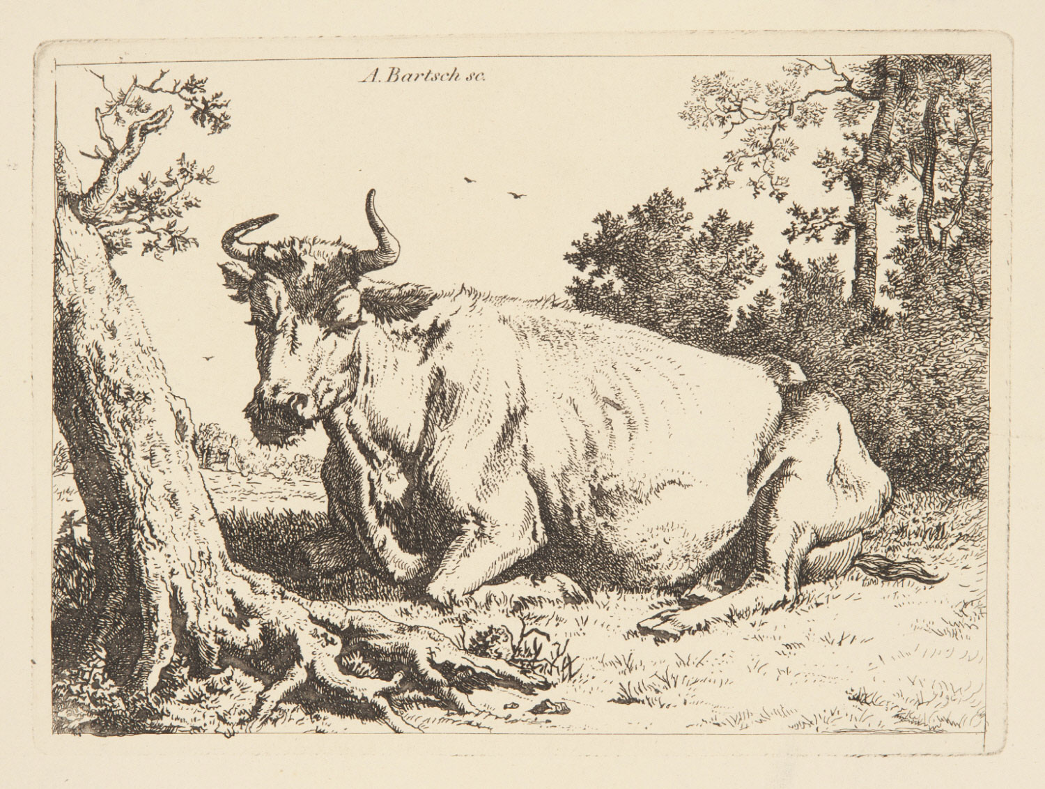 A Cow Seated Near a Tree