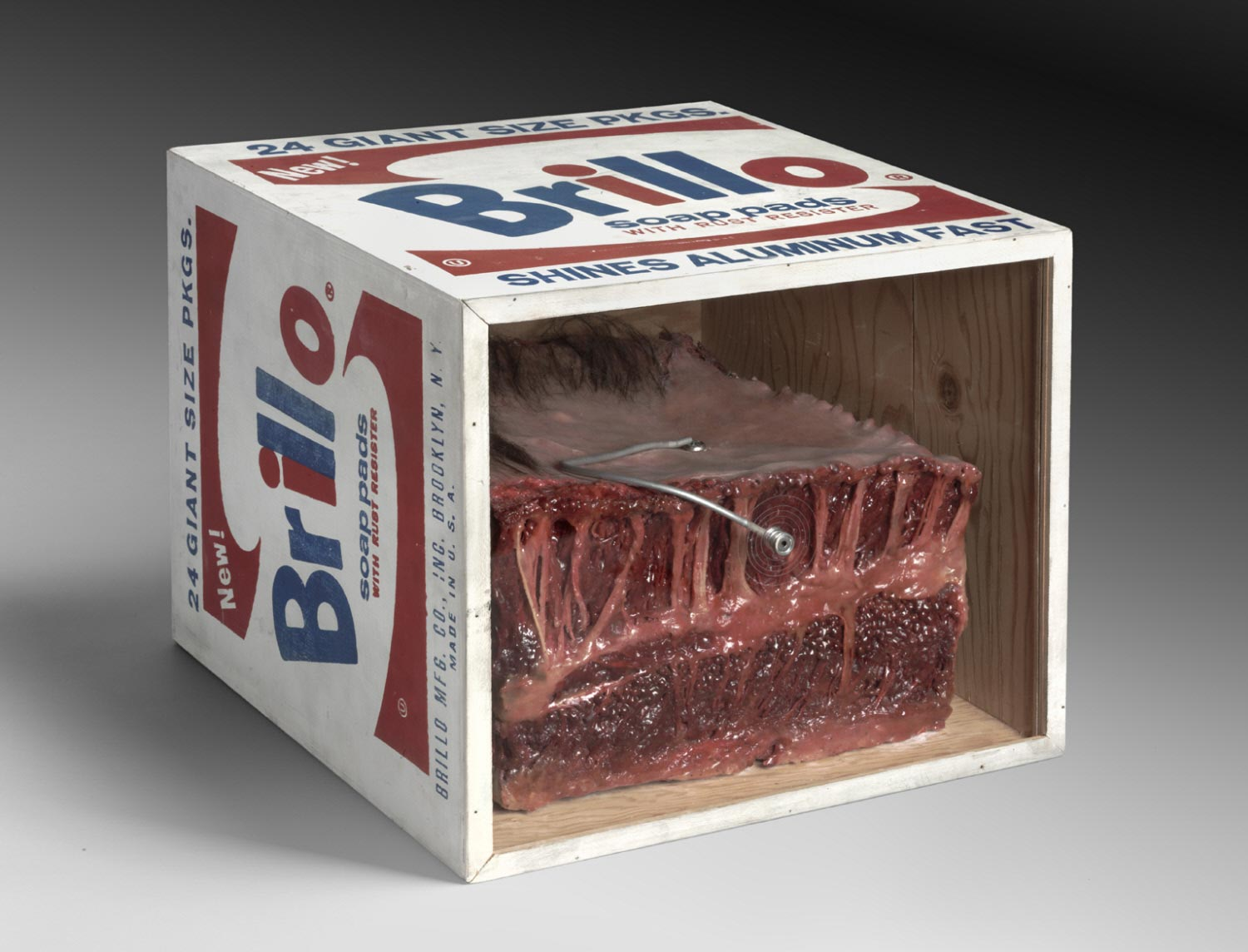 Meat Piece with Warhol Brillo Box