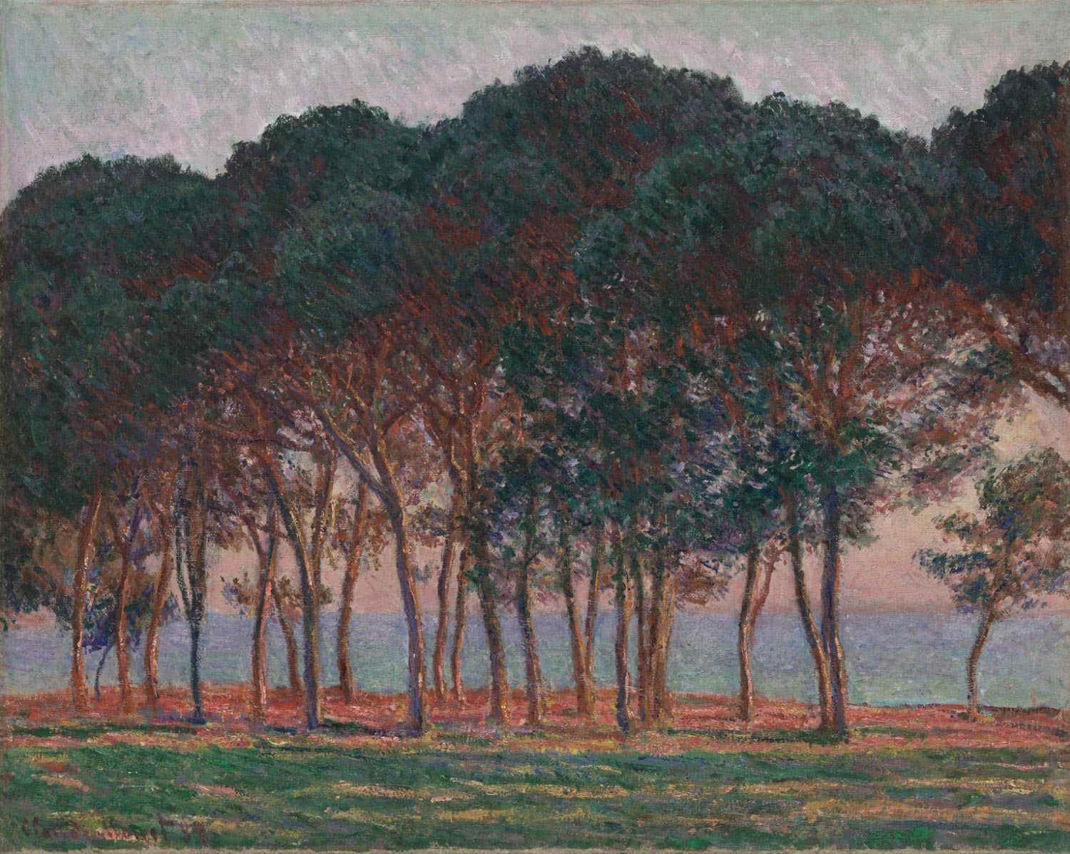 Under the Pines, Evening