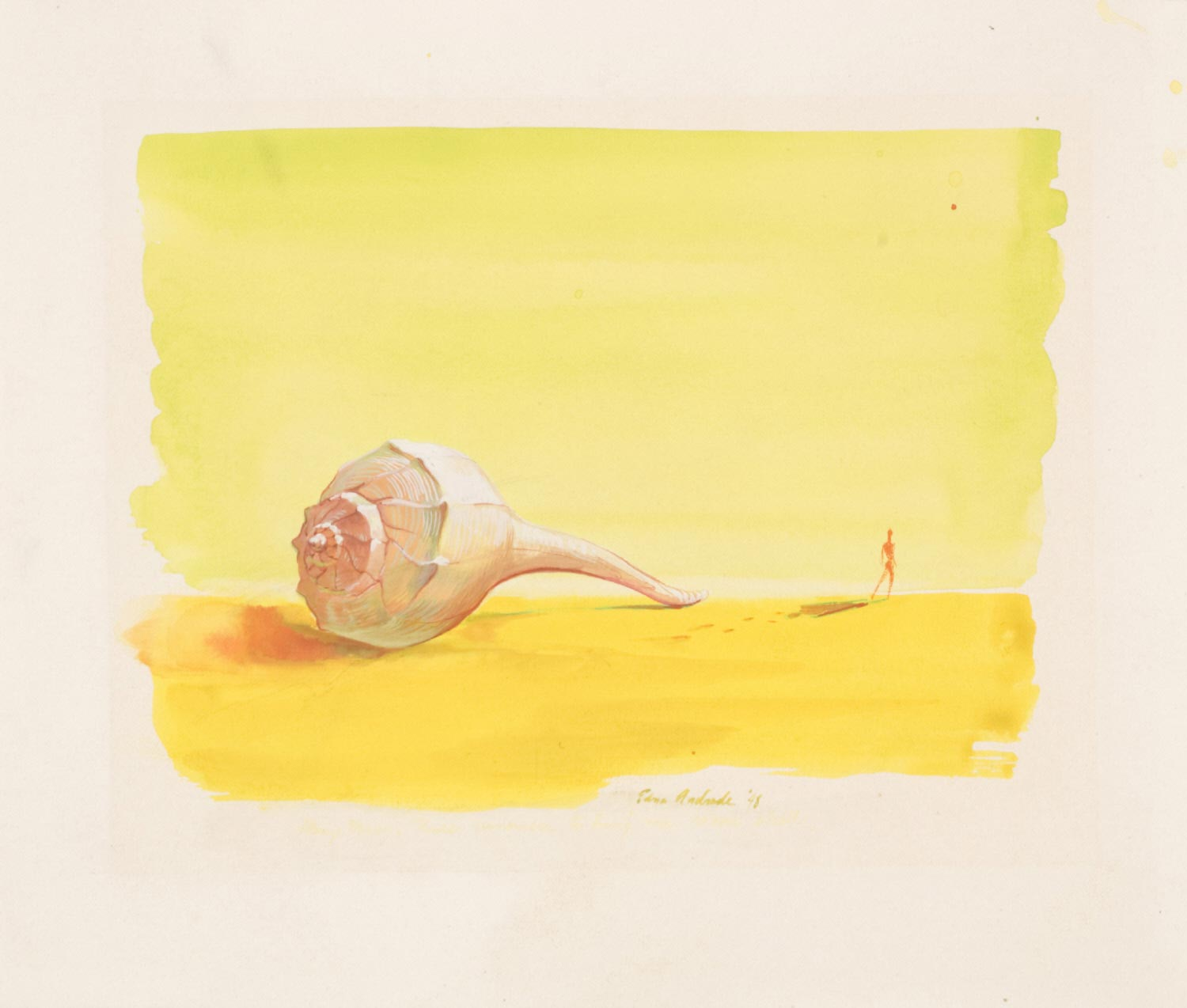 Disappearing Man and Conch Shell