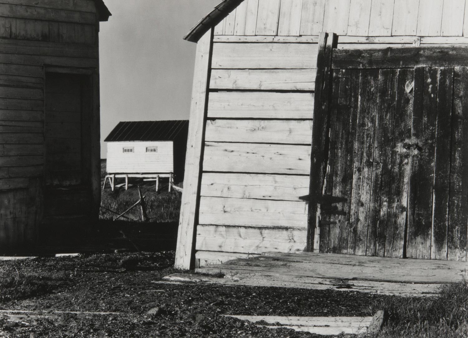 Fish Shed, Gulf of St. Lawrence, Gaspé