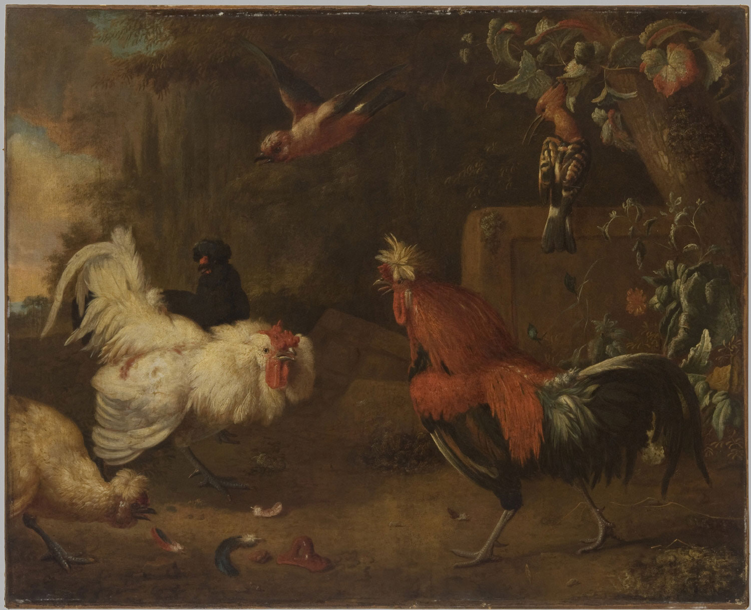 A Rooster and a Hen Fighting